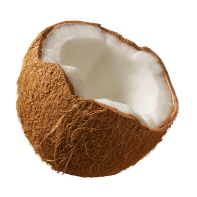 coconut-2-in.jpg